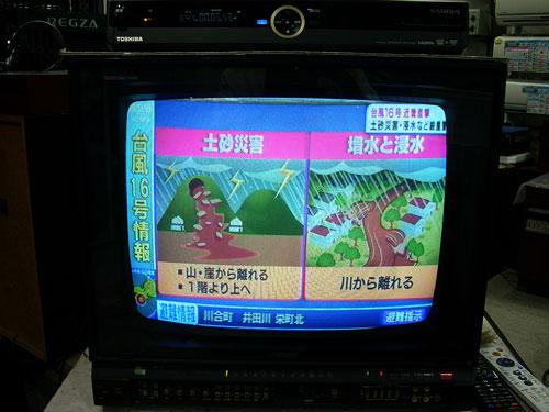 DSCN6423_500X376.jpg