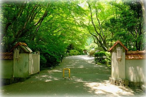 ooyamazaki