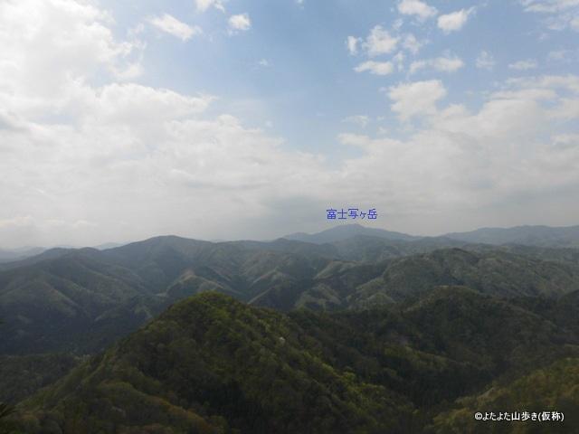 CIMG4334.jpg