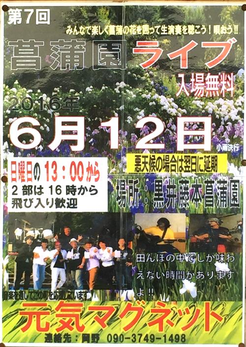 菖蒲園2016-s