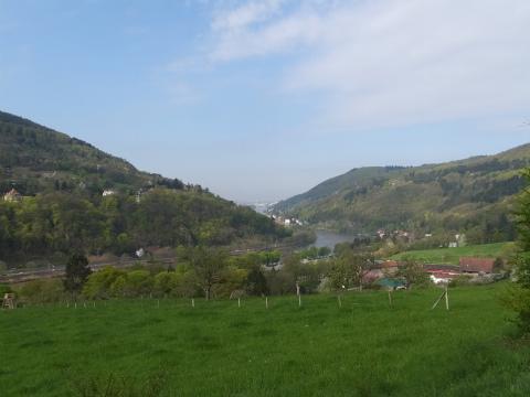 Heidelbergへ