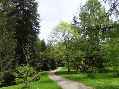 Hohenheim庭園1