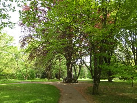 Hohenheim庭園3