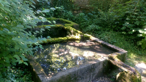 Kloster Denkendorfの池の周り2