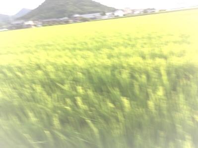 fc2blog_2016083019463640f.jpg