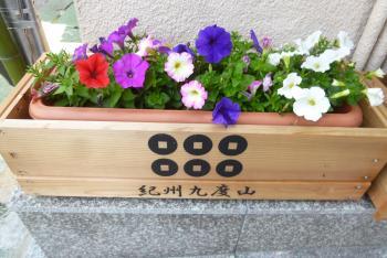 街角で見かけたお花達 2016 4月(mt.okuho)