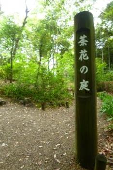 吉城園 2016 5 10 (mt.okuho)