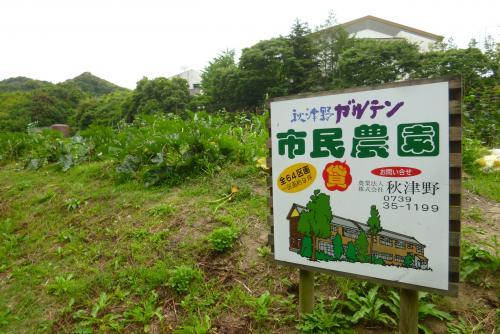 秋津野秋津野ガルテン   野菜畑 2016 6 12 (mt.okuho)