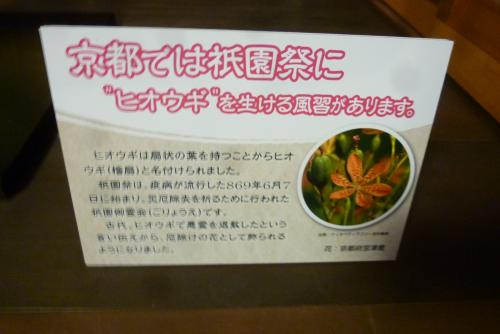 祇園祭 放下鉾(ほうかほこ) 2016 7 15 (mt.okuho)