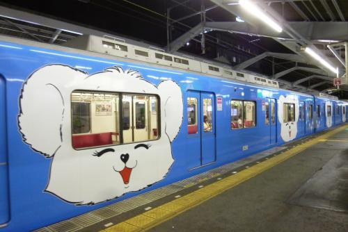 泉北高速鉄道 5000系  クマ電? 2016 7 15 (mt.okuho)