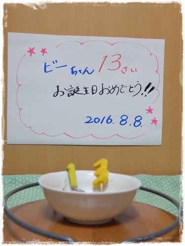 2016-08-07 025