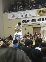 sumo20163.jpg