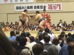 sumo20167.jpg