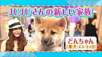 20110720 新堂本兄弟 JUJU パンちゃん 013 50