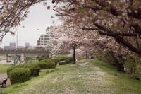 s_muromigawa3.jpg