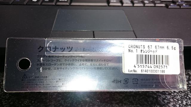 DSC_1032RSZ.jpg