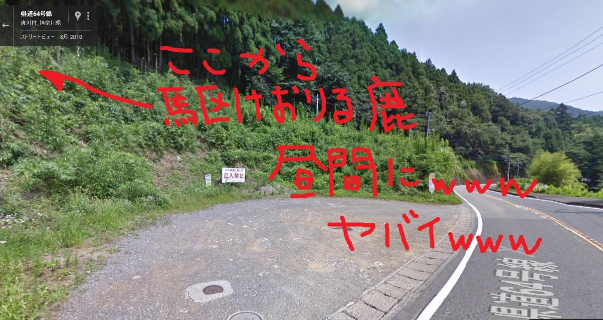 tuchiyamashasinn2.jpg