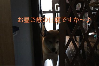 IMG_2664.jpg