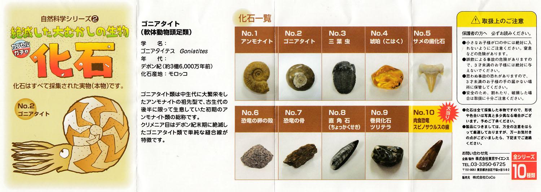 NaturalJ_science2_Fossil_02.jpg