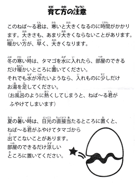 nebaarukun_egg_15.jpg