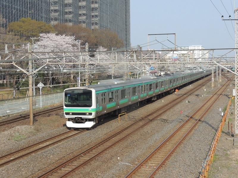 DSCN6774.jpg