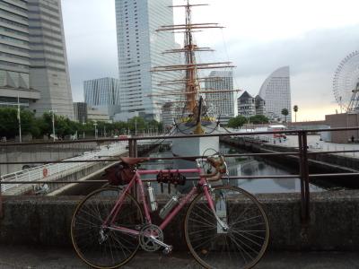 photo_derosa_noropota_miura_0813_1_2016_0813.jpg