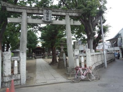 photo_derosa_noropota_miura_0813_2_2016_0813.jpg
