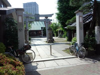 photo_randner_goriyakupota_0612_15_2016_0612.jpg
