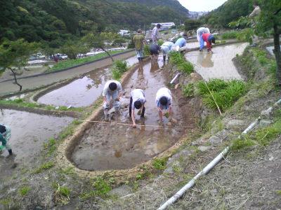 photo_tanada_taue_2_2009_0516.jpg