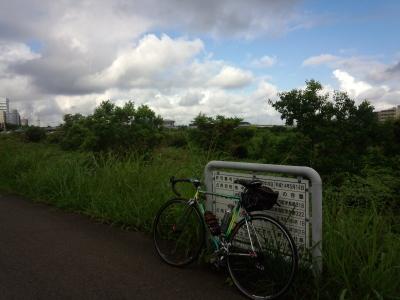 photo_turumigawa_himawarimurakumo0729_4_2016_0729.jpg