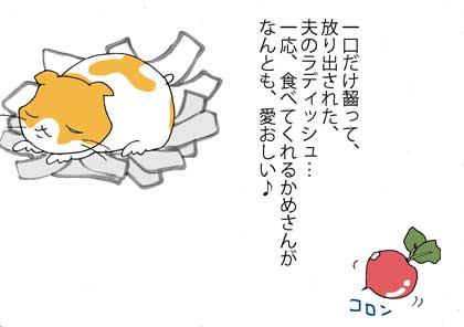 katei5.jpg