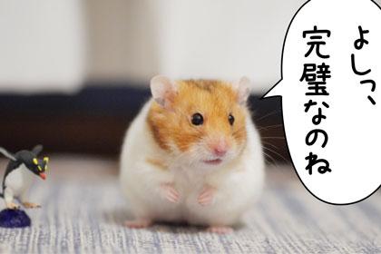 yosi3.jpg