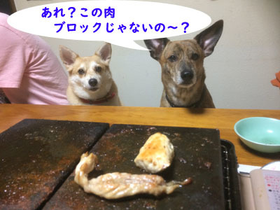 写真 2018-09-29 18 01 57