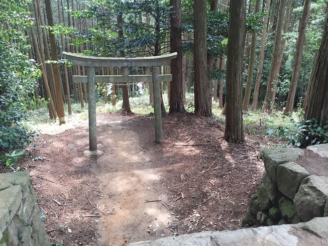 shitarahara_tu15.jpg