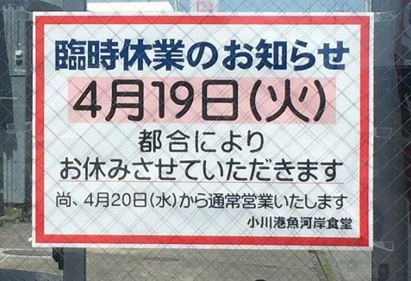 yaizu_tu19.jpg