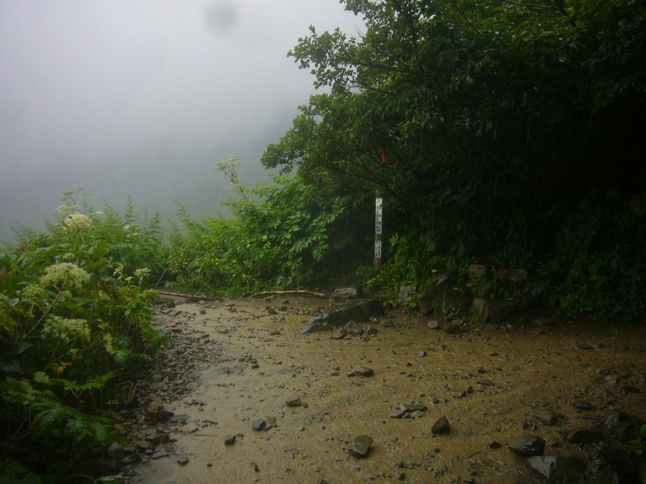 雨の覗き H28.8.01