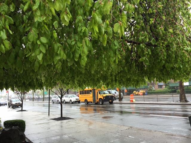 rainydayjune2016.jpg