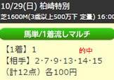 up1029_5.jpg