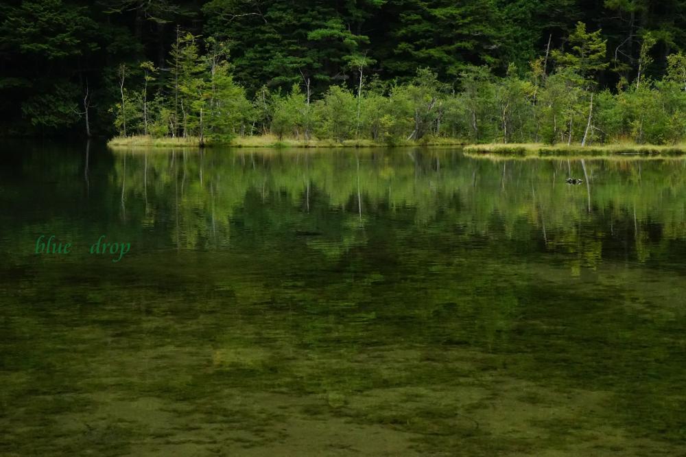 神降地の池*