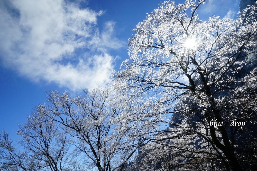 霧氷と青空*