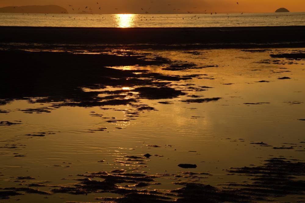 浜辺の煌めき