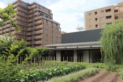 0122:京都八百一本館 屋上農園④