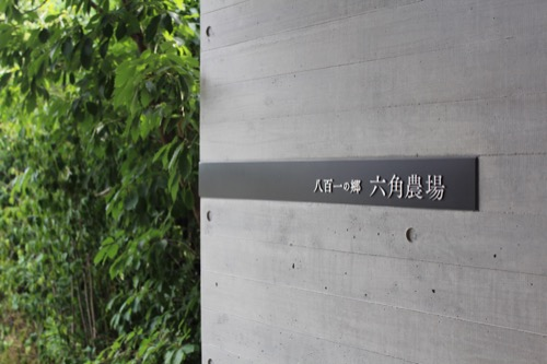0122:京都八百一本館 屋上農園①