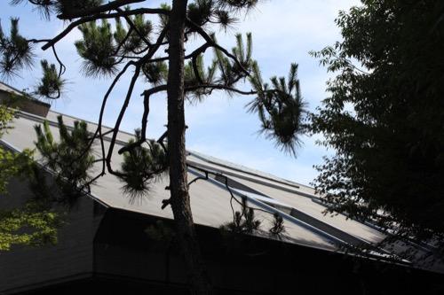 0153:芦屋市民センター 別館外観②