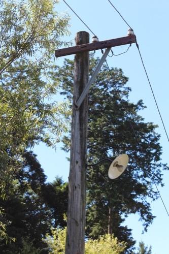 0171:秋野不矩美術館 木の電柱