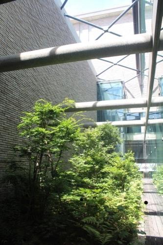 0150:兵庫県立芸術文化センター 共通ロビーの中庭②
