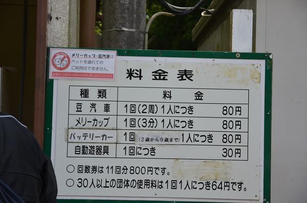 DSC_0707.jpg