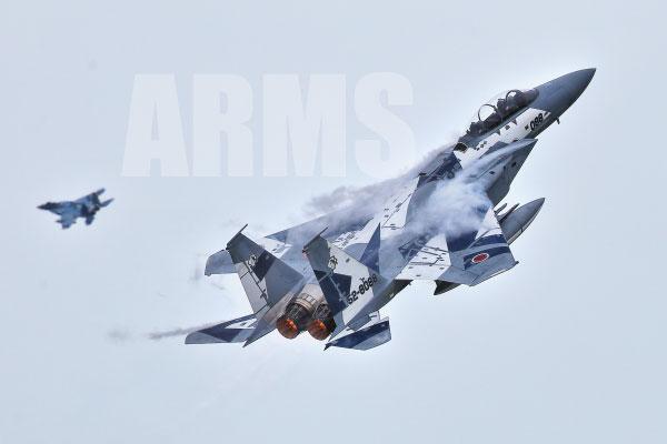 F-15 アグレッサー 機動飛行 航空祭でのハイレート