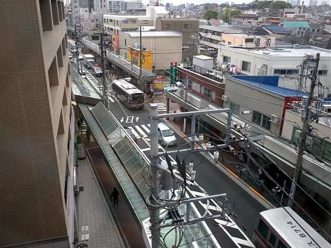 daishinteishoku10.jpg
