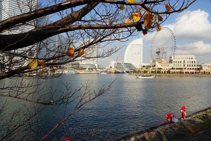横浜8468